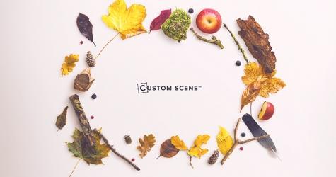 Autumn Edition Scene
