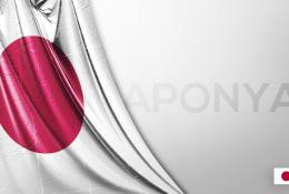Japonya Vektörel Bayrağı