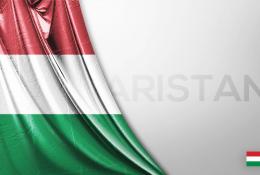 Macaristan Vektörel Bayrağı