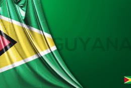Guyana Vektörel Bayrağı