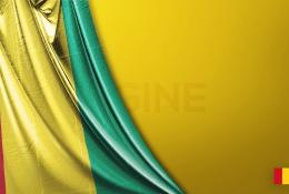 Gine Vektörel Bayrağı