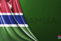 Gambia Vektörel Bayrağı