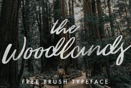 The Woodlands Brush Typeface