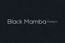 Black Mamba Pattern